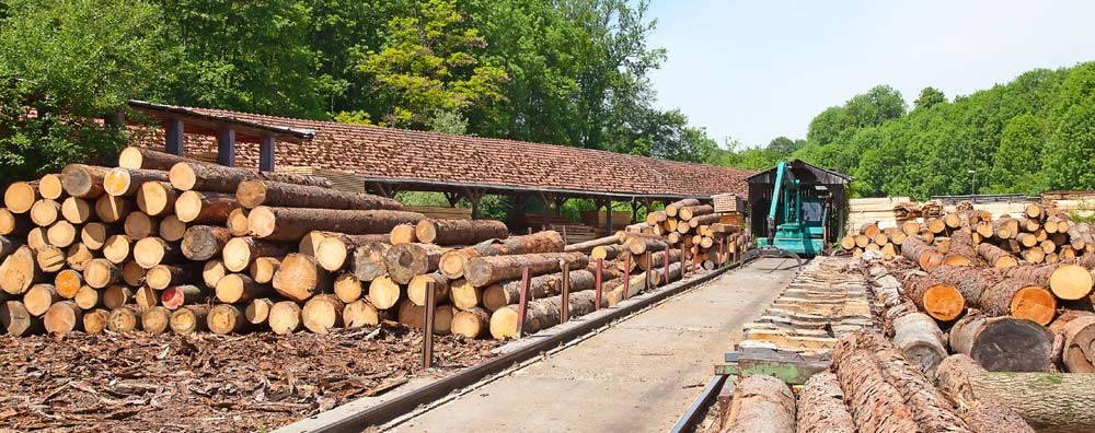фото Wood and wooden logs